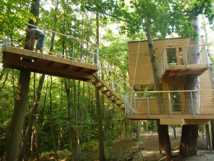 Domki na drzewie to niebanalny pomysł na urlop