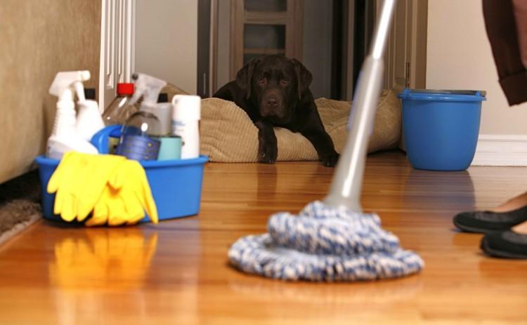 Święta za pasem, czas posprzątać! Zaplanuj to!