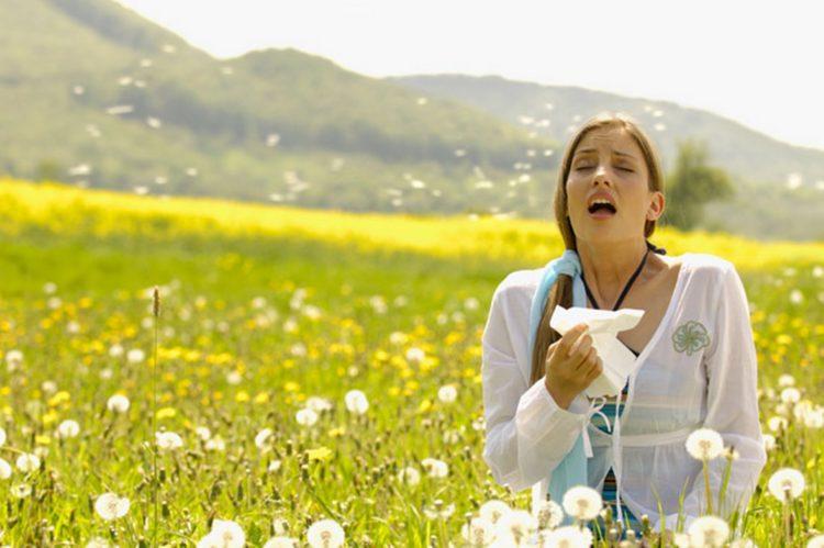 Leczenie alergii najlepiej zacząć od wykonania dokładnych testów alergologicznych, żeby wiedzieć na co jesteśmy uczuleni