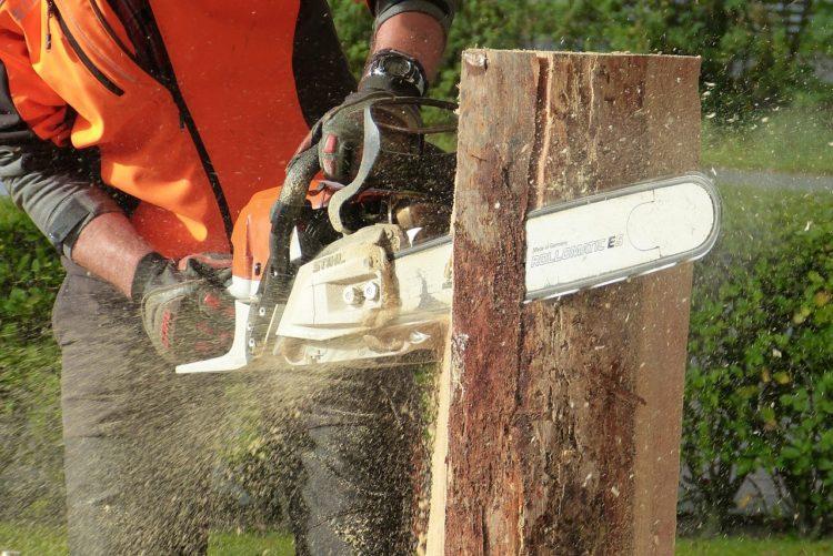 Piły łańcuchowe spalinowe to urządzenia, które przydadzą się nie tylko drwalom - sprawdzą się również w przydomowych ogródkach
