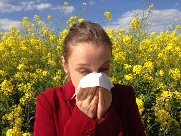 Alergia na pyłki potrafi skutecznie uprzykrzyć życie, dlatego warto wiedzieć co i kiedy w przysłowiowej trawie piszczy