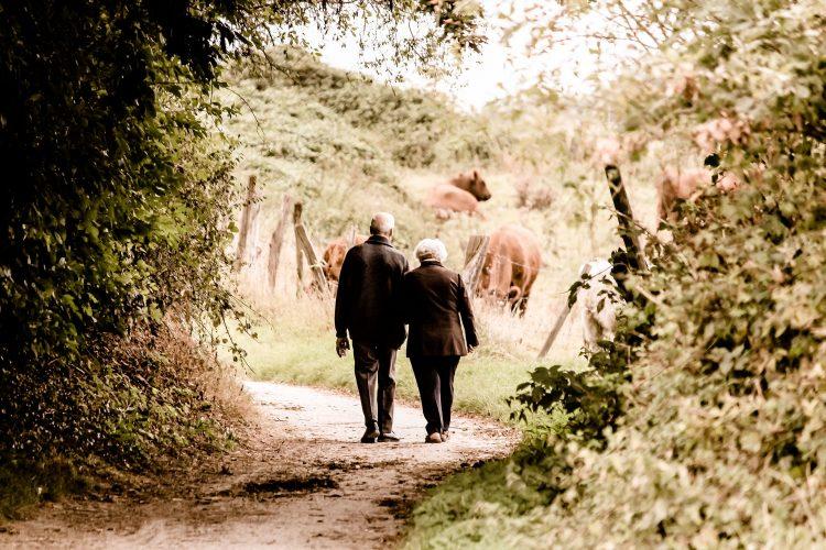 Seniorzy mogą skorzystać z wielu ofert skierowanych wyłącznie do nich, np. kart i karnetów dla seniorów